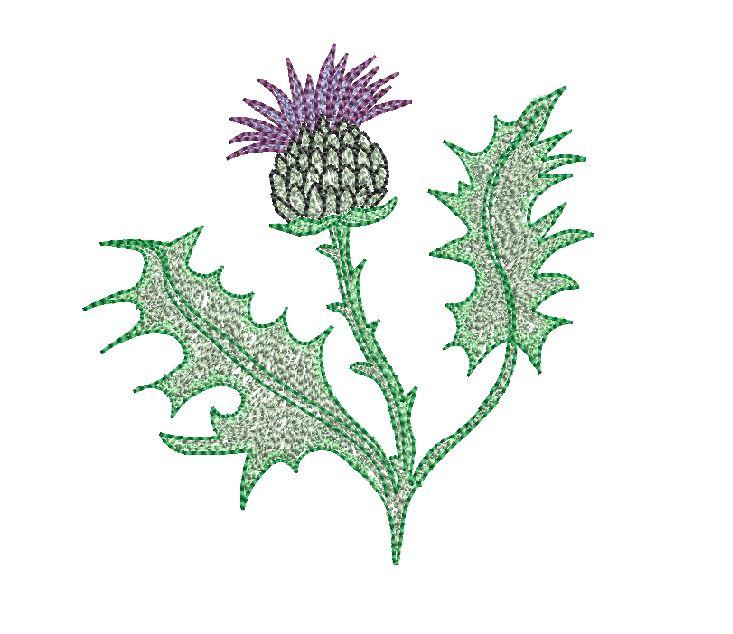 Thistle Head Flower Embroidery Design 3 Sizes Designs22u
